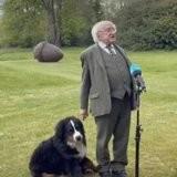 Le président irlandais parle à la télé, son chien se met à faire quelque chose qui captive les spectateurs (vidéo)