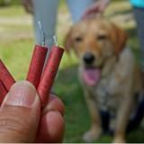 Les feux d'artifices bientôt interdits en Flandre pour assurer le bien-être animal