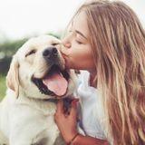 Selon les scientifiques, le chien est le meilleur ami de l'Homme grâce à un gène bien particulier