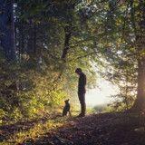 Il voit un homme avec un chien dans la forêt, s'approche et est sous le choc de ce qu'il découvre