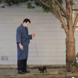 Le chien de Frankenstein (Vidéo du jour)