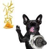 Et si votre chien mangeait des frites ?