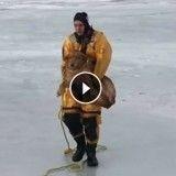 Des pompiers au secours d'un chien tombé dans un lac gelé