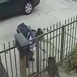 La factrice s'approche d'une maison, ce que révèle la caméra de surveillance est accablant