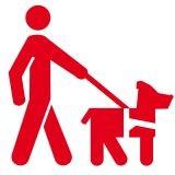 Les écoles de chiens guides d'aveugles vous ouvrent leurs portes