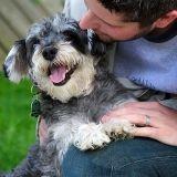 Avoir un chien... pour vivre plus longtemps !