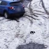 En voiture, il regarde dans son rétroviseur et pousse un cri en réalisant ce qu'il vient de faire (Vidéo)