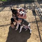 9 ans après la disparition de son chien, elle reçoit un message sur Facebook et fond en larmes