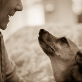 Le chien est-il devenu une personne ? Les réponses du psychologue Philippe Hofman