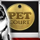 Le tribunal des animaux de compagnie