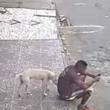 Un chien lui fait pipi dessus, il s'énerve puis les choses prennent une tournure inattendue (Vidéo)