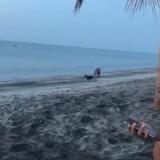 Son chien devient fou sur la plage, il s'approche près de l'eau et n'en croit pas ses yeux