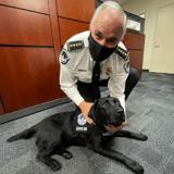 La police du Capitole des États-Unis accueille Lila, un chien de soutien émotionnel