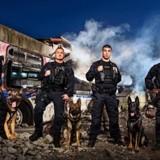 Les chiens policiers de Vancouver vont avoir droit à leur propre calendrier, et c'est carrément classe !