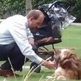 Il pense que personne ne le voit, s'agenouille devant un vieux chien et fait le buzz