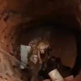Chien piégé au fond d'un puits : les secours arrivent et le toutou fait l'impensable (Vidéo)