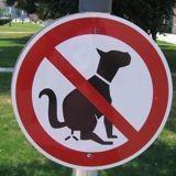 Pootrap : la couche pour chien