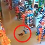 Le chien sort en courant du supermarché, ce que filme la vidéo de surveillance fait le tour du monde
