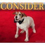 Uggie, le chien du film The Artist nominé aux Oscars ?
