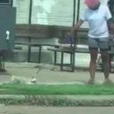 Elle traine son chien dans la rue par sa laisse mais n'avait pas remarqué qu'elle était filmée (Vidéo)