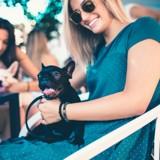 5 activités à faire en ville avec son chien