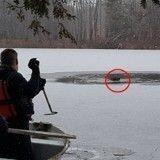 Des pompiers héroïques sauvent un chien tombé dans une rivière gelée (Vidéo du jour)