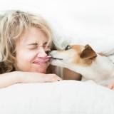 Une étude montre que les femmes dorment mieux avec leur chien qu'avec leur conjoint