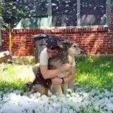 Croyant son chien condamné, elle lui offre un moment de jeu sous la neige (Vidéo du jour)