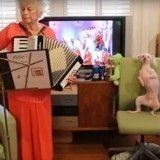 Ce chien danseur devient fou dès que résonnent quelques notes de polka (Vidéo du jour)