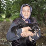 Chiens jetés dans la rivière : 5 chiots ont survécu !