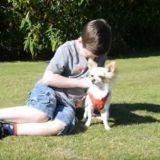 Cet enfant ne devait jamais marcher, mais son chien a changé sa vie