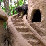 En Thaïlande, cet homme recueille des chiots abandonnés et leur construit un magnifique château en sable (Vidéo)