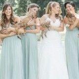 Des chiots de sauvetage aident une mariée à faire passer un message très important