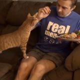10 choses que tous les propriétaires de chats ont déjà fait (Vidéo du jour)