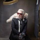 Mort de Karl Lagerfeld : sa chatte Choupette est son héritière