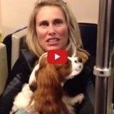 Un chien tombe sur les rails du métro et se fait miraculeusement sauver (Vidéo du jour)