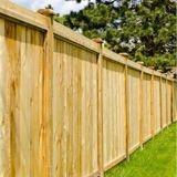 Elle se promène près d'une clôture en bois : un détail attire son regard et elle ne peut s'empêcher de sourire (Vidéo)