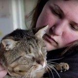 Au Cœur des Refuges, en immersion avec ces associations qui se donnent corps et âme pour les animaux