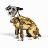 Offrez une authentique combinaison spatiale à votre chien !