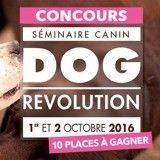 Concours Dog Revolution: avez-vous gagné?
