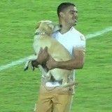 Quand un adorable chien s'invite en plein match de football