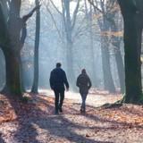 Un couple se promène en forêt et voit des gens jeter quelque chose : la vérité est abominable