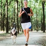 Courir avec son chien : tout ce qu'il faut savoir avant de se lancer
