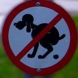 Crotte de chien : Attention au PV !