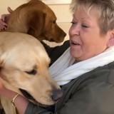 Studio Danielle visite l'Ecole de chiens guides de Paris ! (Vidéo)