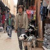 Faites le tour du monde avec une non-voyante et son chien sur Arte