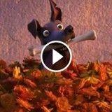Le héros du dernier court-métrage Disney-Pixar est... un chien !