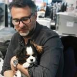 À POILS : David Abiker révèle le petit secret de son chien Obiwan