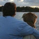 Emportée par les flots, une chienne retrouve ses maîtres après 10 jours d'errance