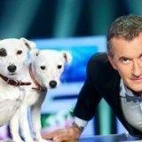 Les chiens de Christophe Dechavanne, vedettes du web